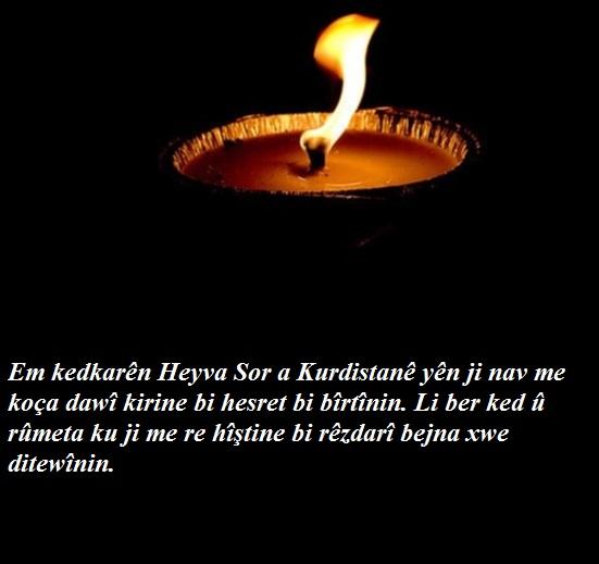 bîranin kurdi